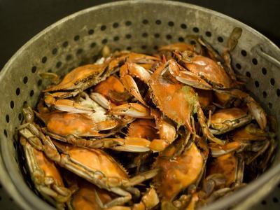 A Basket of Maryland Crabs-Aaron Huey-Photographic Print