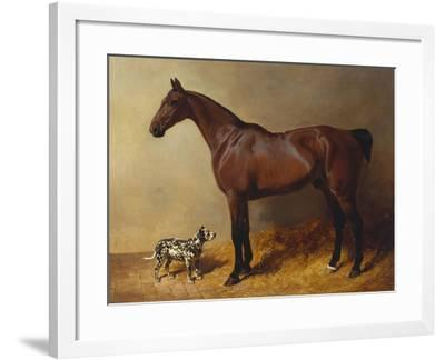 A Bay Hunter and a Spotted Dog in a Stable Interior-John Frederick Herring I-Framed Giclee Print