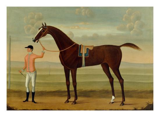 A Bay Racehorse with his Jockey on a Racecourse-Daniel Quigley-Giclee Print