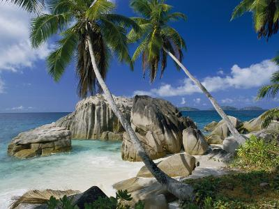 A Beach and Palm Trees on La Digue Island-Bill Curtsinger-Photographic Print