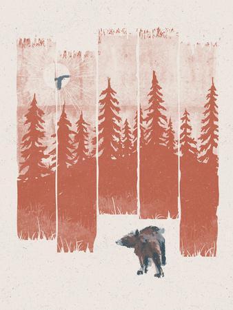 https://imgc.artprintimages.com/img/print/a-bear-in-the-wild_u-l-f941bj0.jpg?p=0