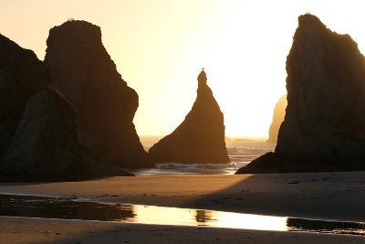 A Bird Atop the Rock Monoliths Known As Sea Stacks At Twilight-Charles Kogod-Photographic Print