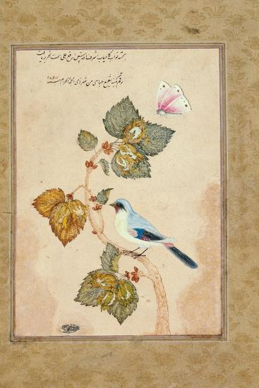 A Bird on a Hazel Branch-Muhammad Shafi Abbasi-Giclee Print