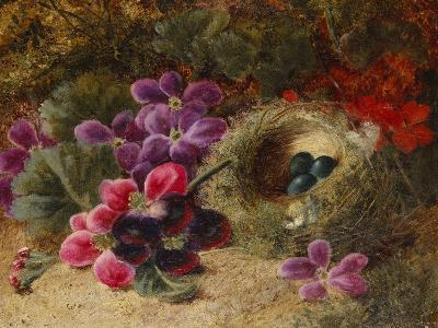 A Bird's Nest and Geraniums-Oliver Clare-Giclee Print