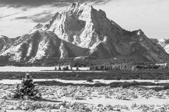 A Black and White Photograph of Mount Moran in the Teton Mountains in Winter-Greg Winston-Photographic Print