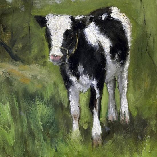 A Black and White Spotted Calf, Standing in a Meadow-Geo Poggenbeek-Art Print