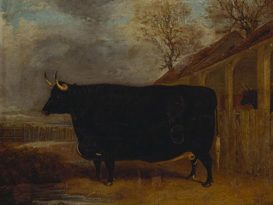 A Black Bull Standing by a Cowshed, an Extensive Landscape Beyond-James Pollard-Giclee Print
