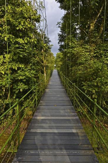 A Boardwalk Leads Through the Rain Forest at Costa Rica's La Selva Biological Station-Kike Calvo-Premium Photographic Print