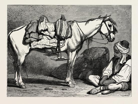 A Bosnian Peasant and His Horse, Bosnia--Giclee Print