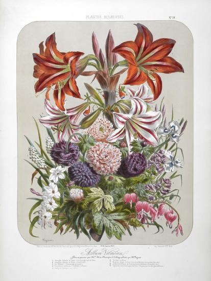 A Bouquet Of Flowers Including Lilies-Elisa Champin-Giclee Print
