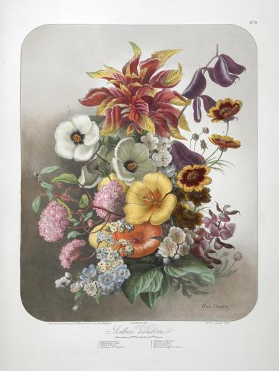 A Bouquet Of Flowers-Elisa Champin-Giclee Print
