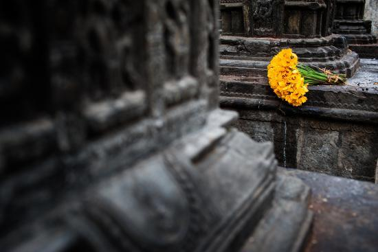 A bouquet of yellow flowers at the stone columns of Swayambhunath.-Martin Edstrom-Photographic Print