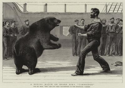 A Boxing Match on Board H M S Cambridge