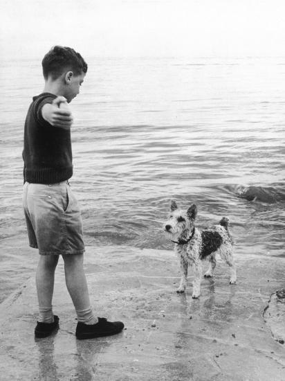 A Boy Throws Stones into the Sea for His Dog to Retrieve: the Dog Looks Up Expectantly-Henry Grant-Photographic Print