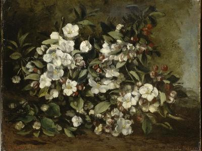 A Branch of Apple Blossoms also Said Cherry Blossoms-Gustave Courbet-Giclee Print