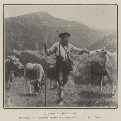 A Brescian Herdsman--Giclee Print