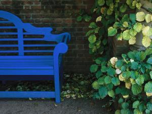 A Brightly Colored Blue Bench at the Chicago Botanic Garden