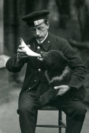 A Brown Bear Cub Being Bottle Fed by Keeper, Leslie Martin Flewin, at London Zoo in May 1914-Frederick William Bond-Photographic Print