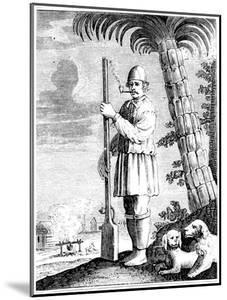 A Buccaneer, 1873