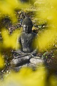 A Buddha Statue in the Garden of Zen Temple Ryumonji Surrounded by Forsythia