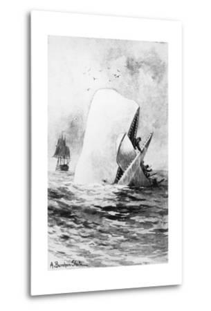Illustration of the White Whale