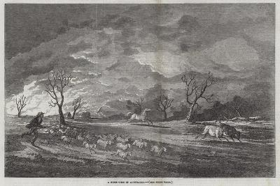A Bush-Fire in Australia--Giclee Print