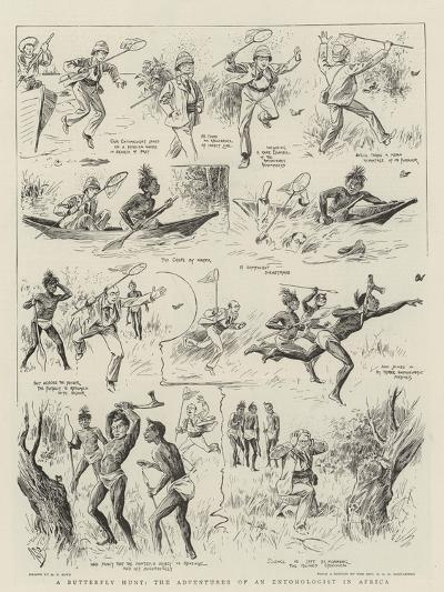 A Butterfly Hunt, the Adventures of an Entomologist in Africa-Alexander Stuart Boyd-Giclee Print