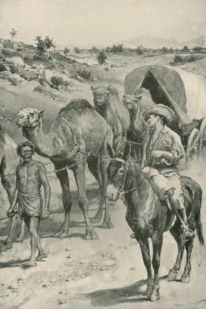 A Camel-Caravan, Western Australia-Walter Stanley Paget-Giclee Print