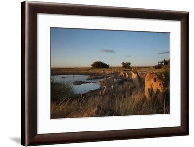 A Camera Trap Captures Researchers Documenting Lions in the African Serengeti-Michael Nichols-Framed Photographic Print