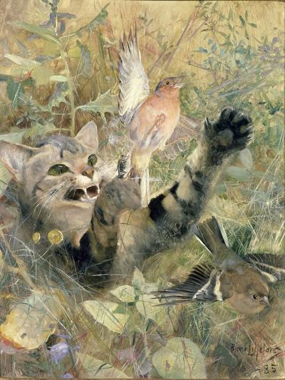 A Cat and a Chaffinch, 1885-Bruno Andreas Liljefors-Giclee Print