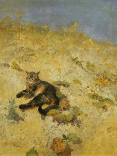 A Cat Basking in the Sun-Bruno		 Liljefors-Premium Giclee Print