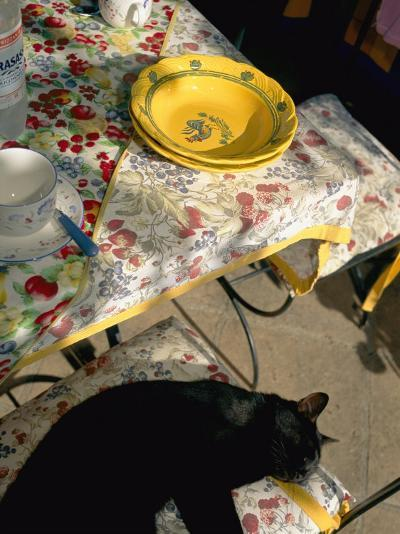 A Cat Lies on a Chair by a Table That is Set for a Meal-Tino Soriano-Photographic Print