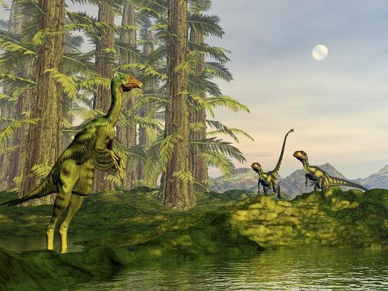 A Caudipteryx Watching Dilong Dinosaurs Approaching-Stocktrek Images-Art Print