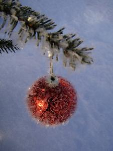 A Christmas Bauble on a Fir Tree