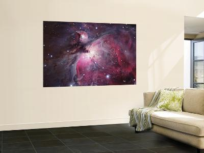 A Close up of the Orion Nebula--Wall Mural