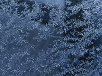 A Close View of Autumn Frost on a Car Window-George F^ Mobley-Photographic Print
