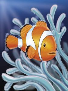 A Clown Fish Swimming by Sea Anemones