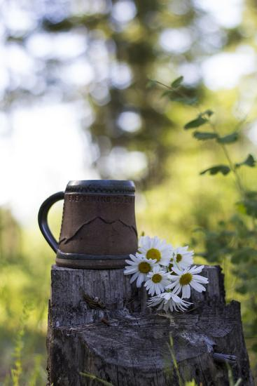 A Coffee Cup Sits In An Old Stump In The Woods Next To A Bouquet Of Daisies Summer In Montana-Hannah Dewey-Photographic Print