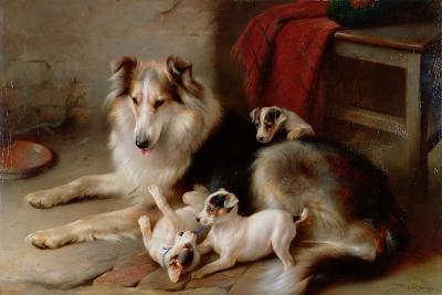 A Collie with Fox Terrier Puppies, 1913-Walter Hunt-Giclee Print