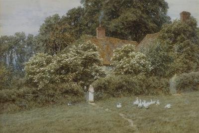 A Cottage at Farringford, Isle of Wight-Helen Allingham-Giclee Print