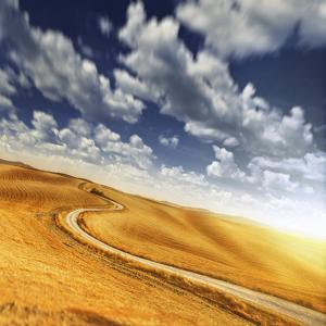 A Country Road in Field Against Moody Sky, Tuscany, Italy