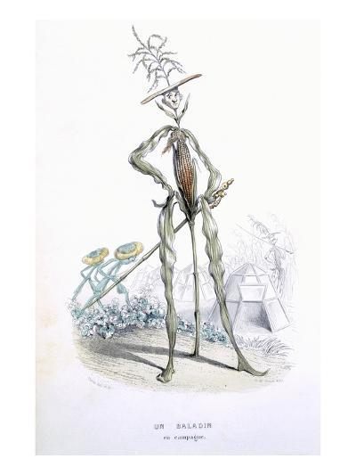 A Country Stroller, from 'L'Empire Des Legumes, Memoires De Curcurbitus'-Amedee Varin-Giclee Print