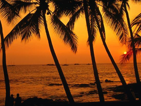 A Couple in Silhouette, Enjoying a Romantic Sunset Beneath the Palm Trees in Kailua-Kona, Hawaii-Ann Cecil-Photographic Print