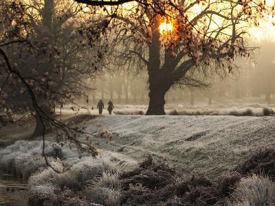 A Couple Walk in the Winter in Richmond Park-Alex Saberi-Photographic Print