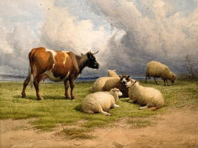 A Cow and Five Sheep, 1887-Thomas Sidney Cooper-Giclee Print