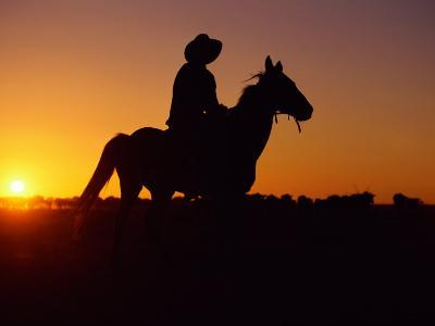 A Cowboy and His Horse Ride off in to the Sunset-Medford Taylor-Photographic Print
