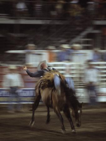 https://imgc.artprintimages.com/img/print/a-cowboy-rides-a-bucking-bronco-during-a-rodeo-steamboat-springs-colorado_u-l-p4jqc40.jpg?p=0