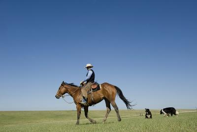 A Cowboy Rides His Horse On a Ranch Near Fort Pierre-Joel Sartore-Photographic Print