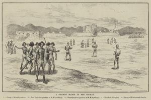 A Cricket Match in the Soudan