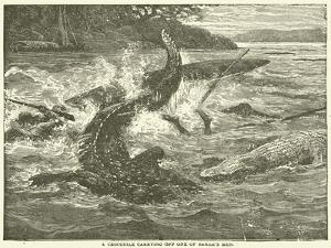A Crocodile Carrying Off One of Baker's Men